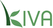 kiva1 Organizations & Foundations