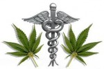 4cdb07abebl weed.jpg 150x100 Research Doesn't Support Use Of Medical Marijuana