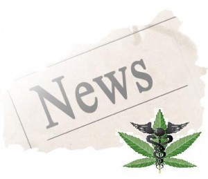 medical-marijuana-News